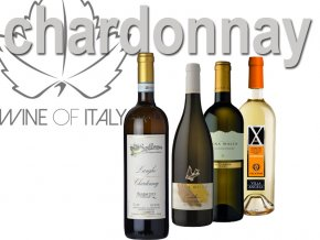 chardonnay výběr