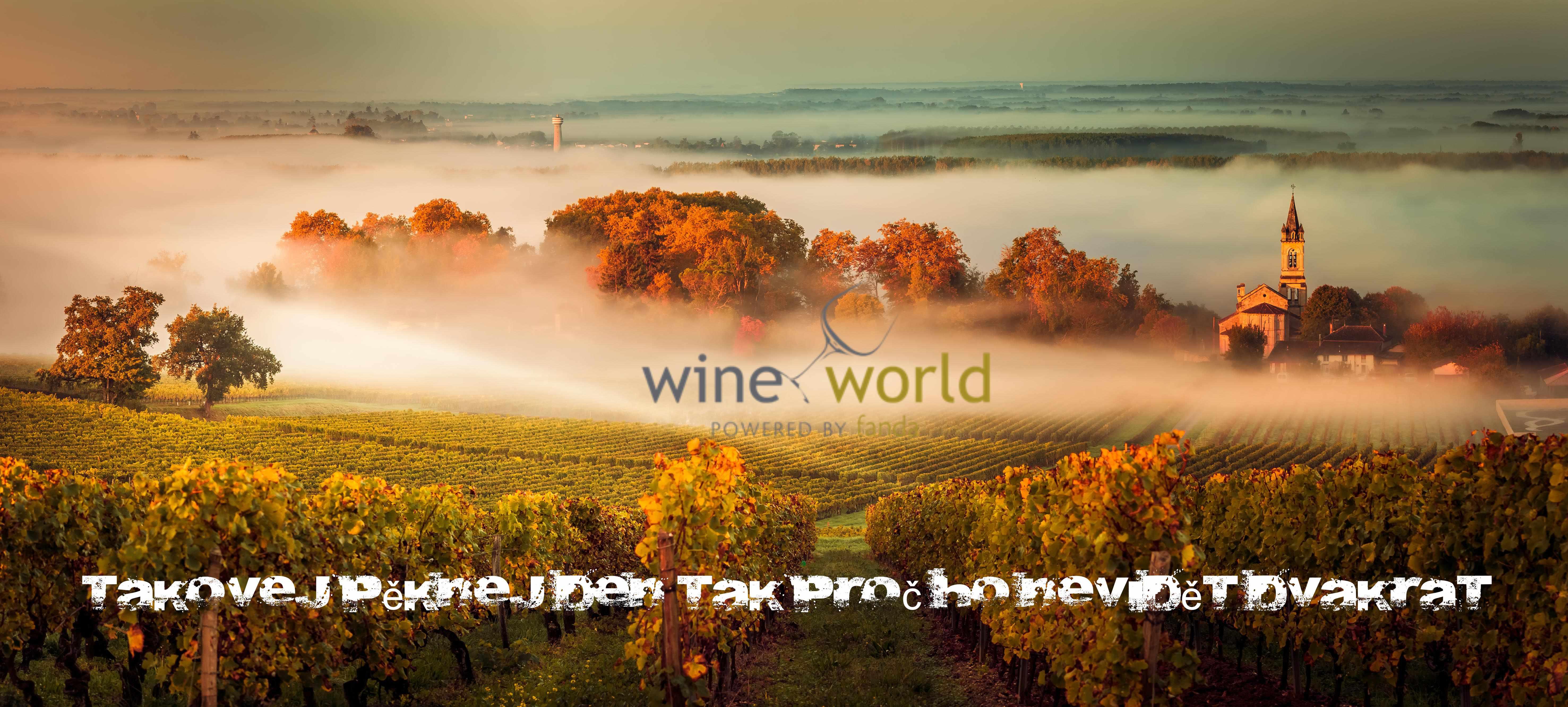 vinice s mlhou