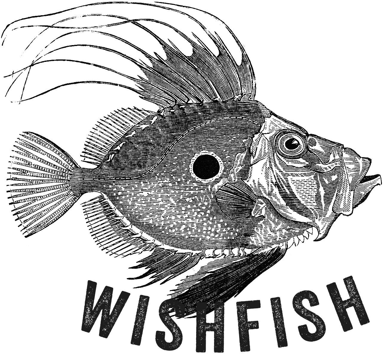 wishfish.cz