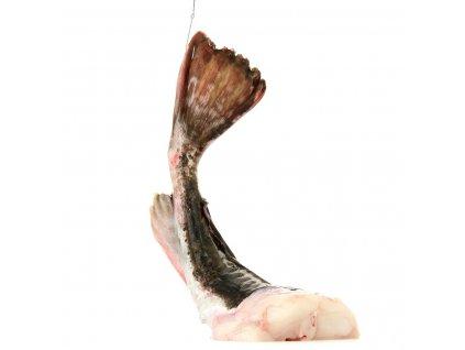 ďas foto good ryba bez hlavy