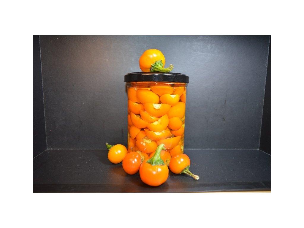 korál orange nakládaný