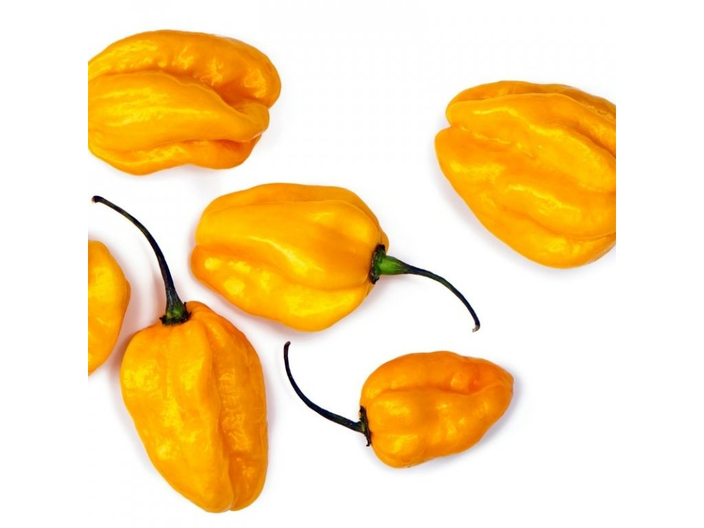 habanero yellow (2)