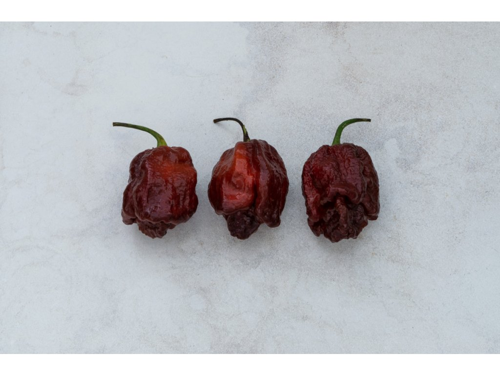 Trinidad Moruga Scorpion Chocolate