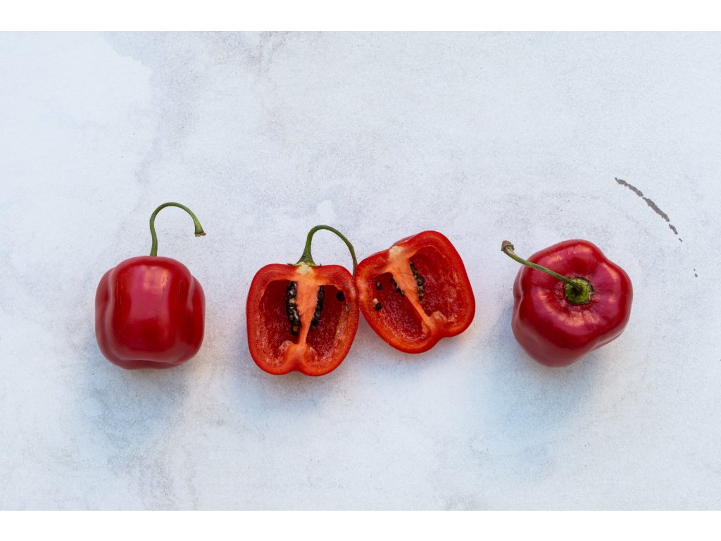 Rocoto Red