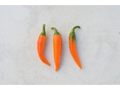 bulgarian_carrot