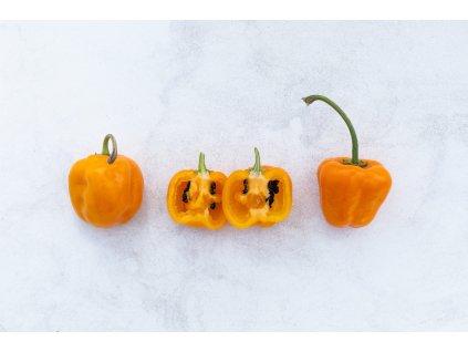 Rocoto Orange