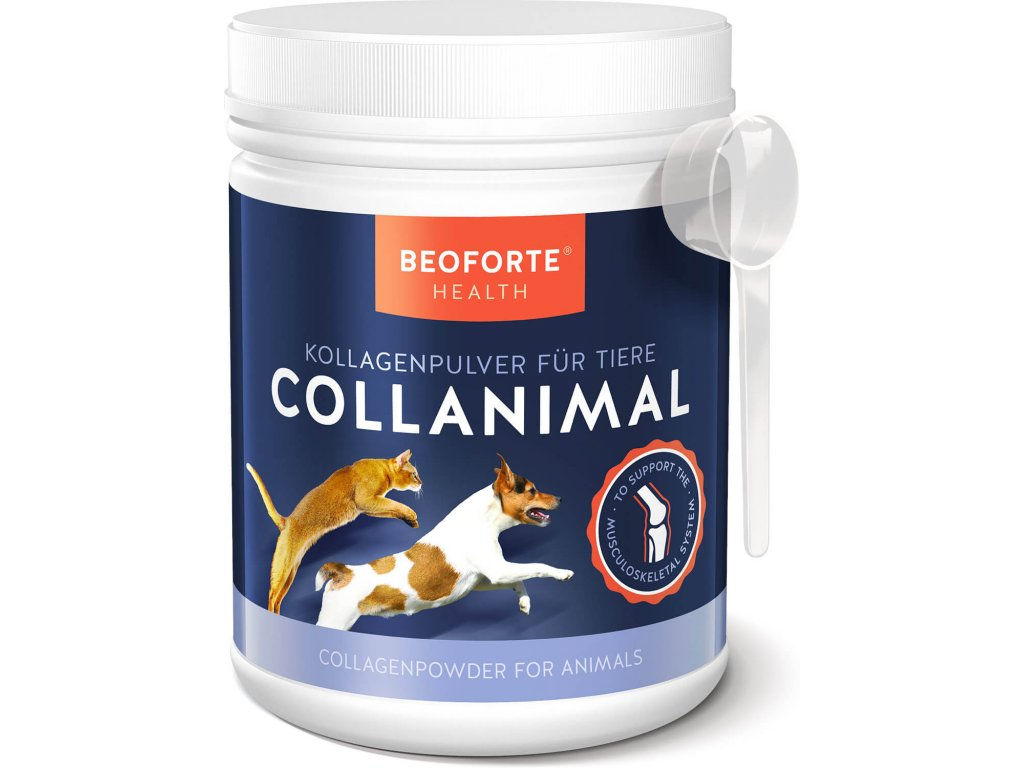 Beoforte Collagen Dose 500g 02 Front Loeffel