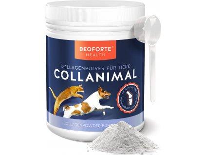 Beoforte Collagen Dose 500g 03 Front Loeffel Pulver