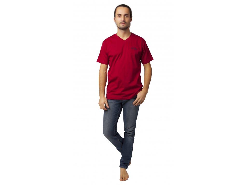 Pánské triko CALVI 20-078 - vínová