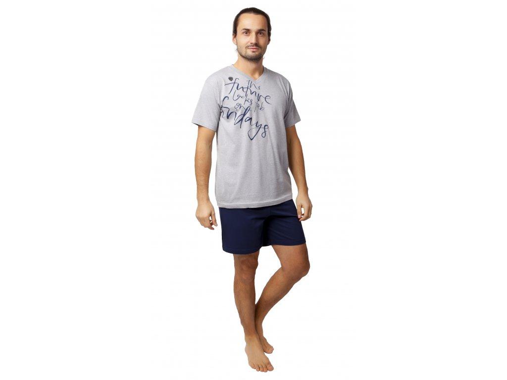 Pánské pyžamo s kraťasy CALVI 20-129 - šedý melír