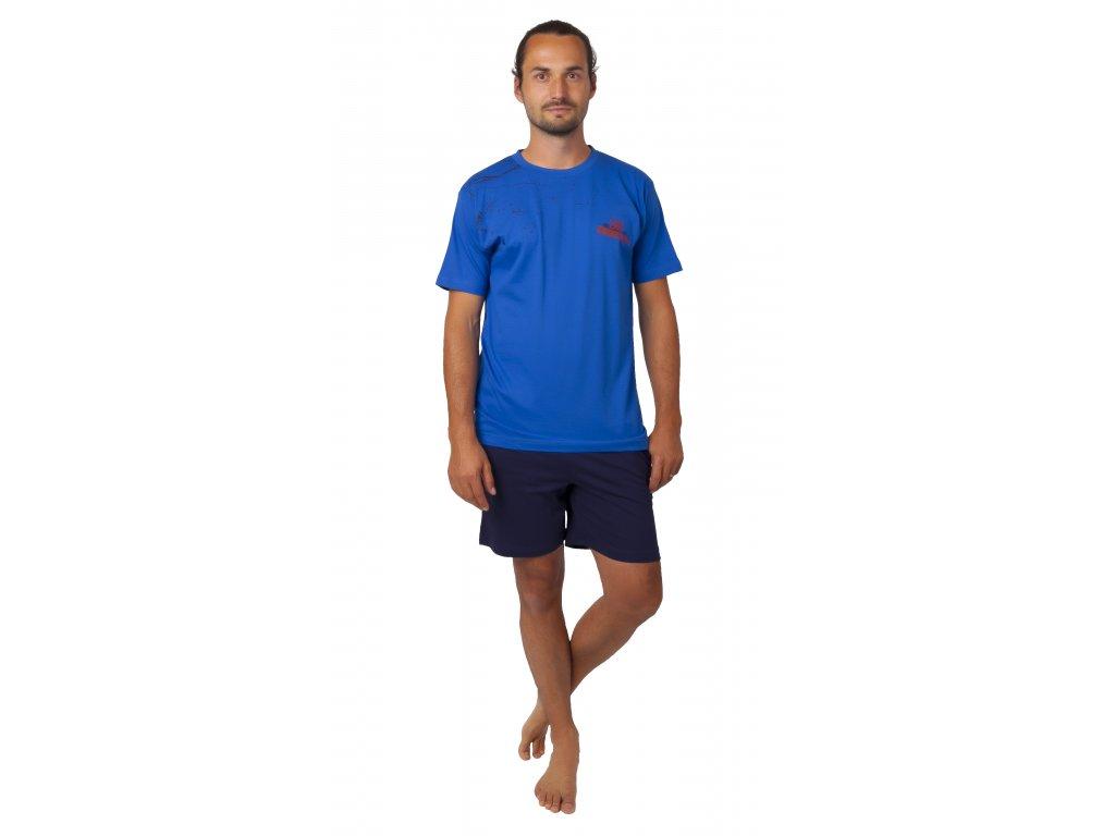Pánské pyžamo CALVI 20-370 - modré