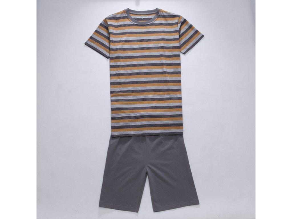 Dětské chlapecké pyžamo WOLF S2764 - hnědé (Velikost 134)