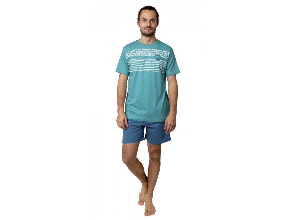 Pánské pyžamo Calvi 19-089 - zelené (Velikost XL)