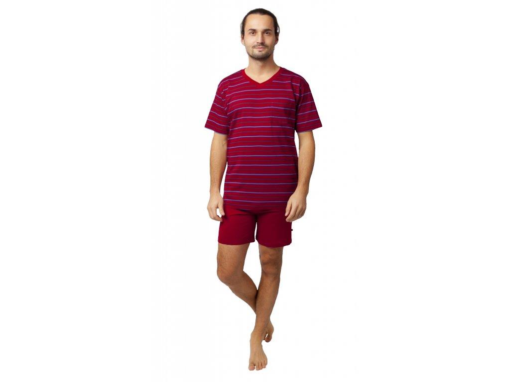 Pánské pyžamo Calvi 20-135 - bordo