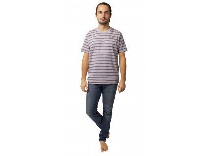 Pánské triko CALVI 20-072 - šedé, vínový pruh