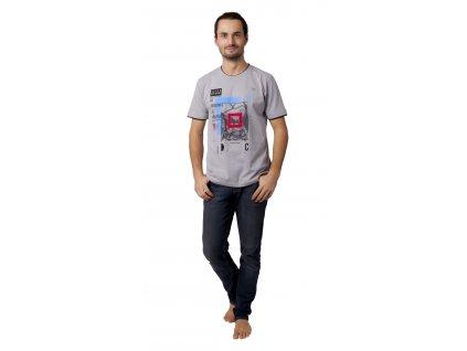 Pánské triko CALVI 19-025 - šedé