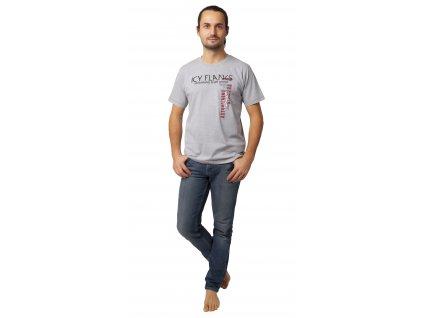 Pánské triko CALVI 20-071 - šedé
