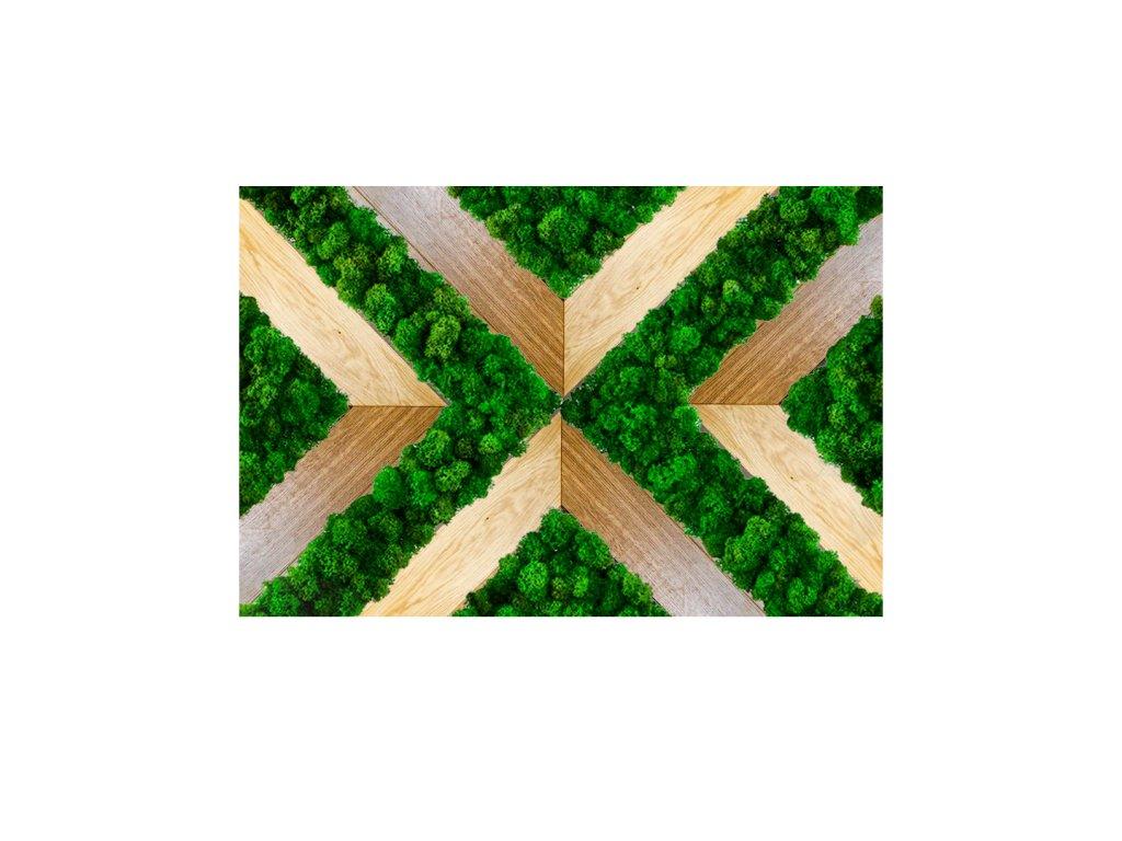 Mechový obraz REPUBLIKA kombinace sobího mechu a dřeva
