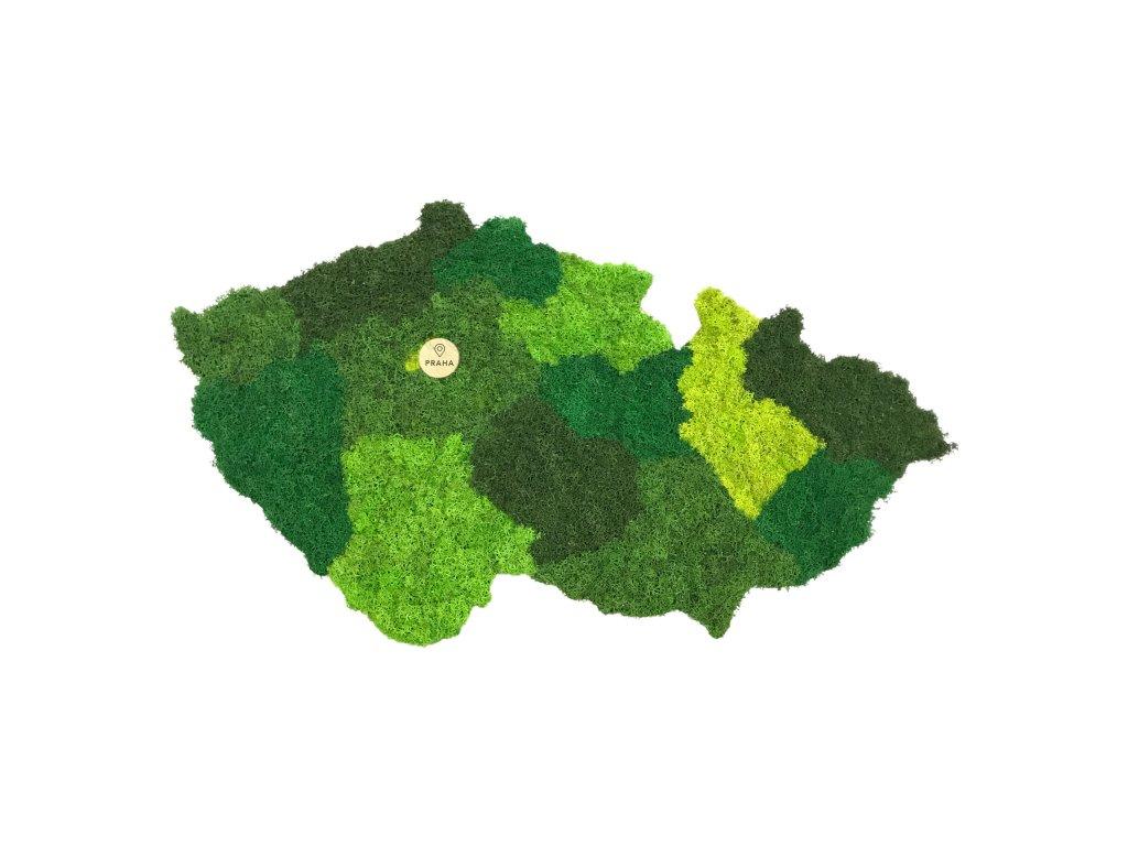 Mechová mapa kraje ze sobího mechu