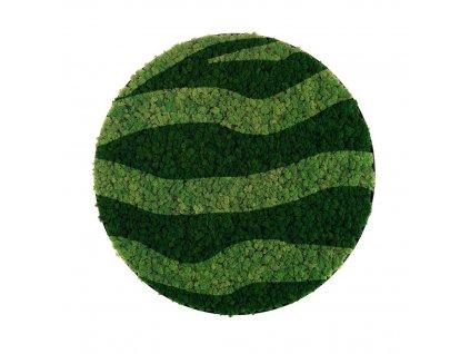 Kulatý mechový obraz kombinace zeleného sobího mechu