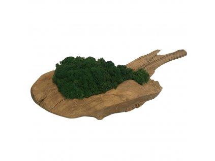 Sobí mech v míse z teakového dřeva