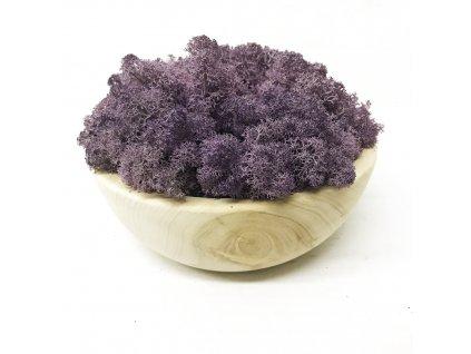 Sobí mech v přírodním květináči fialový