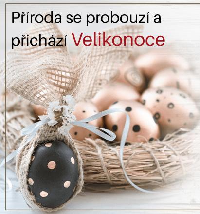 Příroda se nám probouzí a Velikonoce přichází