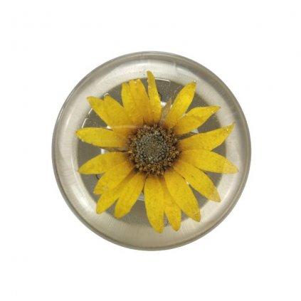 Otvírák na pivo Sunflower