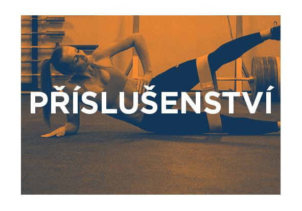 Workoutové příslušenství a doplňky, gymnastické kruhy, odporové gumy, magnezko, švihadla, masážní pomůcky, atd.