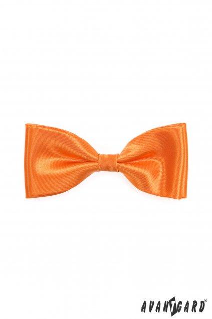 Lesklý oranžový motýlek