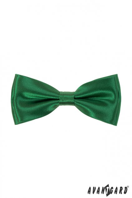 Zelený motýlek s kapesníčkem