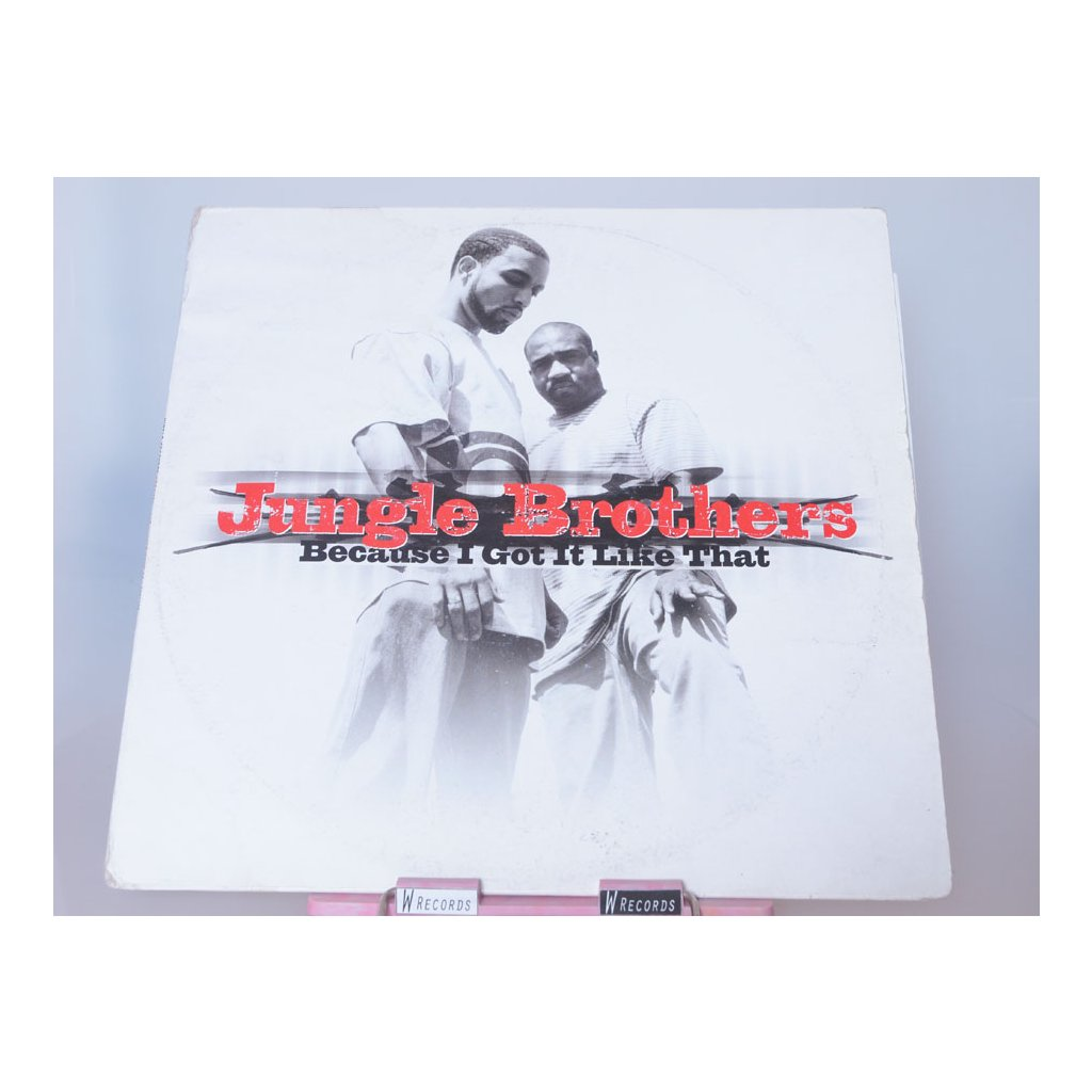 Jungle Brothers – Because I Got It Like That