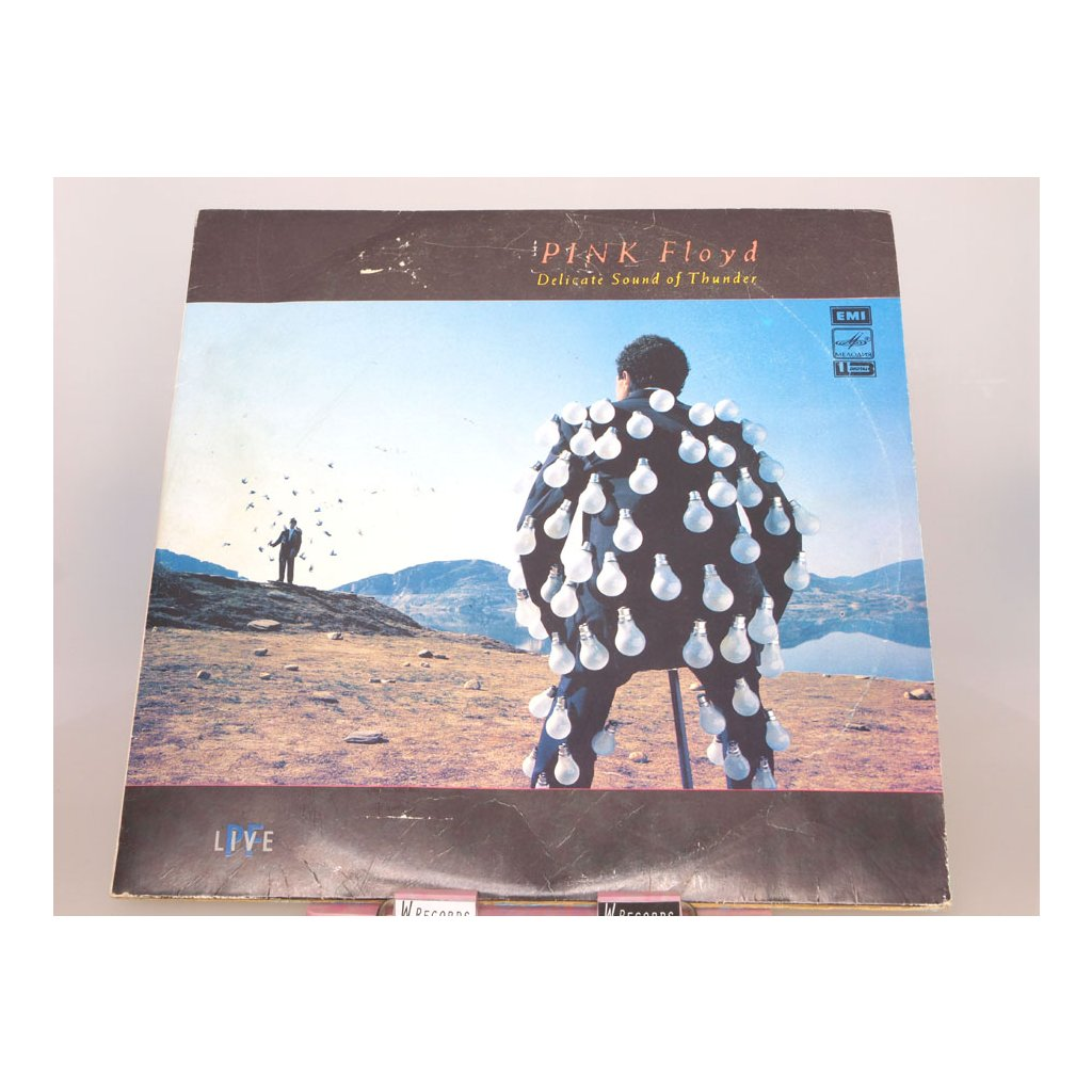 Pink Floyd – Delicate Sound Of Thunder 2LP