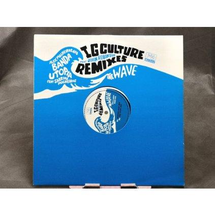 "Alex Malheiros And Banda Utopia Feat Sabrina Malheiros / John Robinson – The Wave (IG Culture Remixes) 12"""