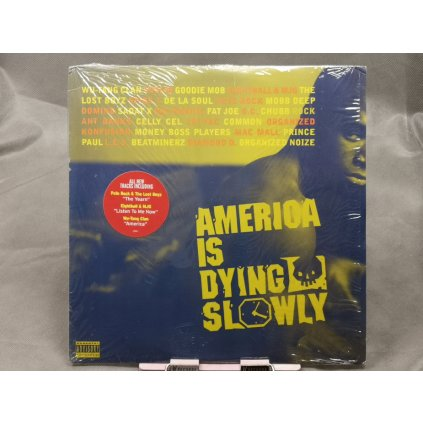 Various Artists – America Is Dying Slowly 2LP