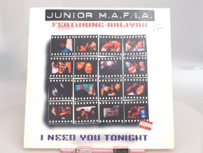 Junior M.A.F.I.A. Featuring Aaliyah ‎– I Need You Tonight