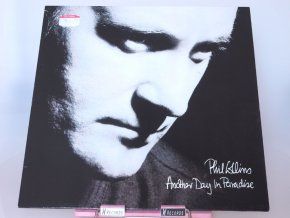 Phil Collins ‎– Another Day In Paradise