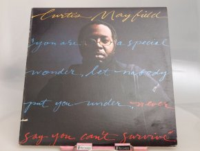 Curtis Mayfield ‎– Never Say You Can't Survive