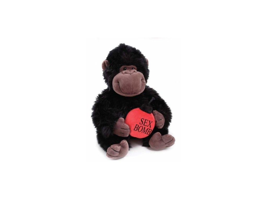 Gorila s bombou