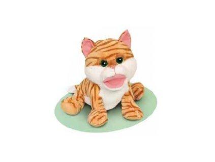 Kočička s velkou pusou