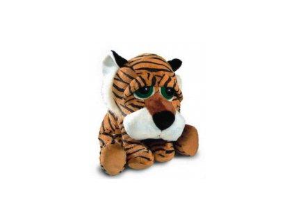 Tygr s velkýma očima