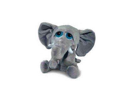 Slon s velkýma očima