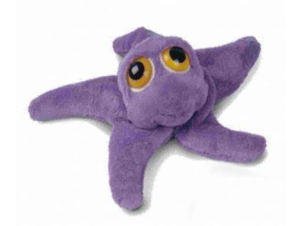 Chobotnice plyšová velké oko
