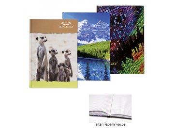 Záznamní kniha A4 čtvereček 100 listů