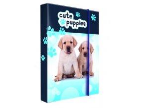 Box na sešity A4 Puppies