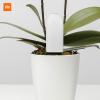 Xiaomi Mi Flora Monitor Chytrý senzor pro rostliny¨do hlíny měření ph meter istage rostliny 2 evropská eu verze