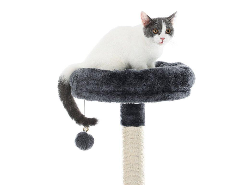 velký péro ničí pevnou kočičku