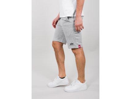 Alpha Industries BIG LETTER SHORT grey pánske šortky