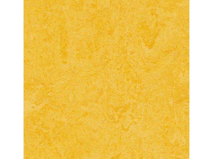 Forbo Marmoleum Click lemon zest 333251 30x30cm