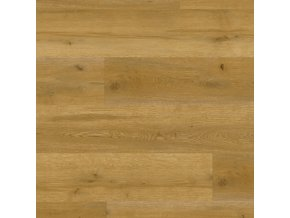 Vinylová podlaha Objectflor Expona Domestic C4 5834 Golden Valley Oak
